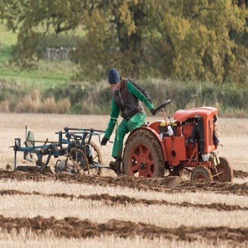 2019 Ploughing Match Saturday 26th October