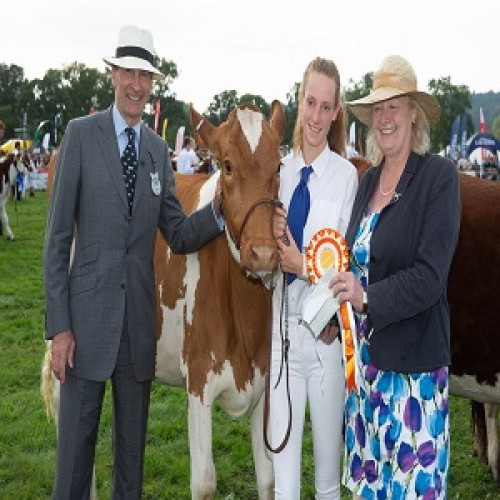 Three Shires Cattle Competition Results