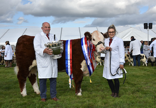 Next Generation Shine at Moreton Show
