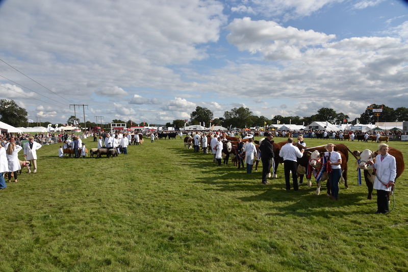 Moreton Show Cancelled for 2020